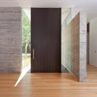 Inredning av en modern stor entré, med vita väggar, ljust trägolv, en enkeldörr och en brun dörr