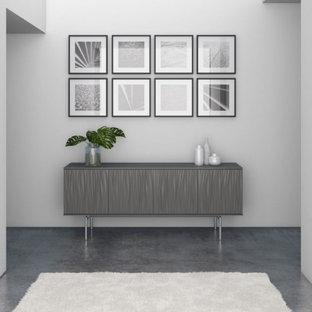 Inspiration pour un hall d'entrée minimaliste de taille moyenne avec un mur gris, sol en stratifié et un sol gris.