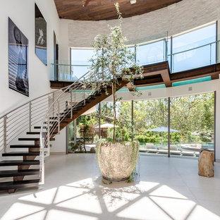 Idee per un ampio ingresso design con pareti bianche, pavimento in cemento, pavimento grigio, una porta a pivot e una porta bianca