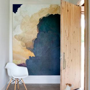 Diseño de entrada contemporánea con puerta simple y puerta de madera clara