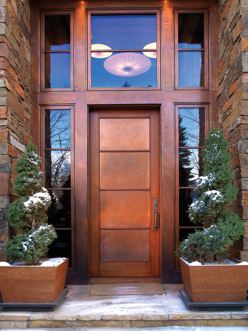 trendy front door photo in other with a single front door and a metal front door