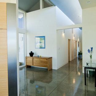 Идея дизайна: прихожая в стиле модернизм с бетонным полом и зеленым полом