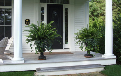 Porch Life: 12 Ways to Beautify a Porch With Plants