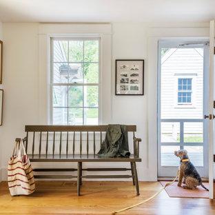 Idéer för att renovera en maritim foajé, med vita väggar, mellanmörkt trägolv, en enkeldörr och brunt golv