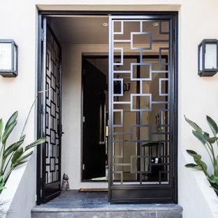 Cette image montre une porte d'entrée design avec une porte double et une porte métallisée.