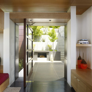 Example of a trendy pivot front door design in San Francisco with a dark wood front door