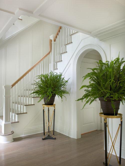 Foyer Plants : Plant stand houzz