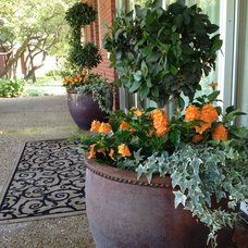 Traditional Entry by Reynolds Landscape & Pools