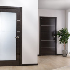 Contemporary Entry by Doors And Beyond