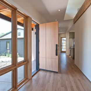 Foto di un corridoio design di medie dimensioni con una porta in legno chiaro, pareti bianche, parquet chiaro e una porta singola