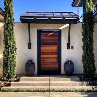 Example of a trendy entryway design in Orange County with a medium wood front door