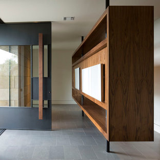 Inspiration for a contemporary pivot front door remodel in Austin with white walls
