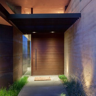 Ejemplo de puerta principal minimalista, extra grande, con paredes metalizadas, suelo de cemento, puerta pivotante y puerta de madera oscura