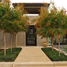 Mediterranean Entry by Westfall Design Studio