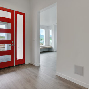 Inspiration for a modern laminate floor entryway remodel in Other with white walls and a glass front door