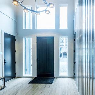 Пример оригинального дизайна: большое фойе в стиле модернизм с серебряными стенами, полом из винила, одностворчатой входной дверью, черной входной дверью и коричневым полом