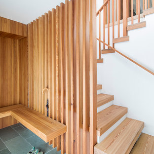 Cette image montre une entrée minimaliste de taille moyenne avec un couloir, un sol en ardoise et un sol vert.