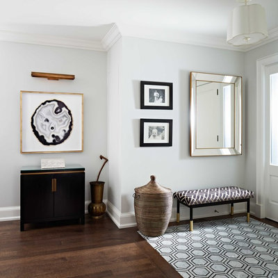 Inspiration for a mid-sized transitional dark wood floor and brown floor entryway remodel in Toronto with blue walls and a white front door