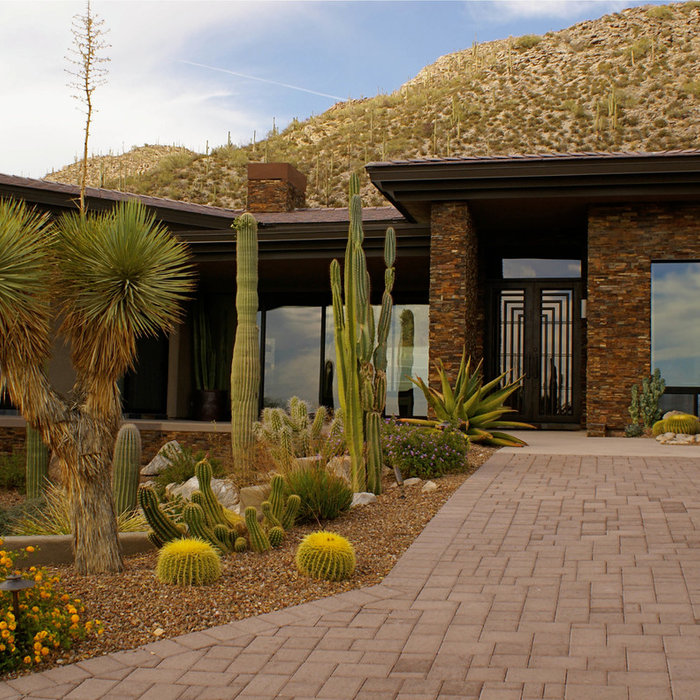 Dove Mountain Estate - New Construction Full Home Design