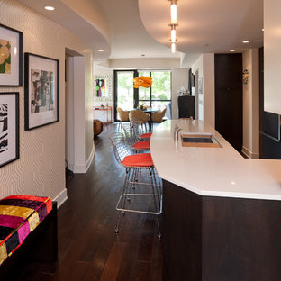 Example of a trendy dark wood floor and brown floor entry hall design in Minneapolis with beige walls