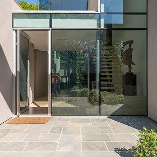 ニューヨークの片開きドアコンテンポラリースタイルのおしゃれな玄関ドア (ガラスドア) の写真