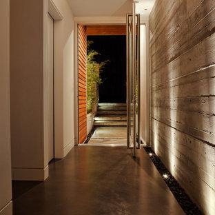 Ejemplo de entrada minimalista con suelo de cemento, puerta pivotante y puerta de vidrio