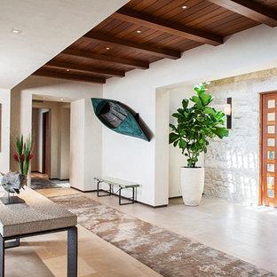 Modern inredning av en foajé, med vita väggar, travertin golv, en pivotdörr och mellanmörk trädörr