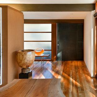 Свежая идея для дизайна: прихожая в стиле ретро с металлической входной дверью и поворотной входной дверью - отличное фото интерьера