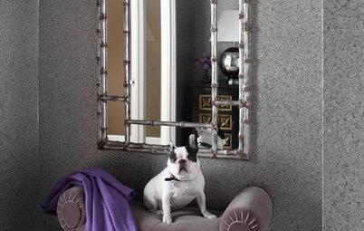 The Dog Days of Interior Design?