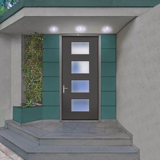 Idéer för en mellanstor modern ingång och ytterdörr, med en enkeldörr och en grå dörr