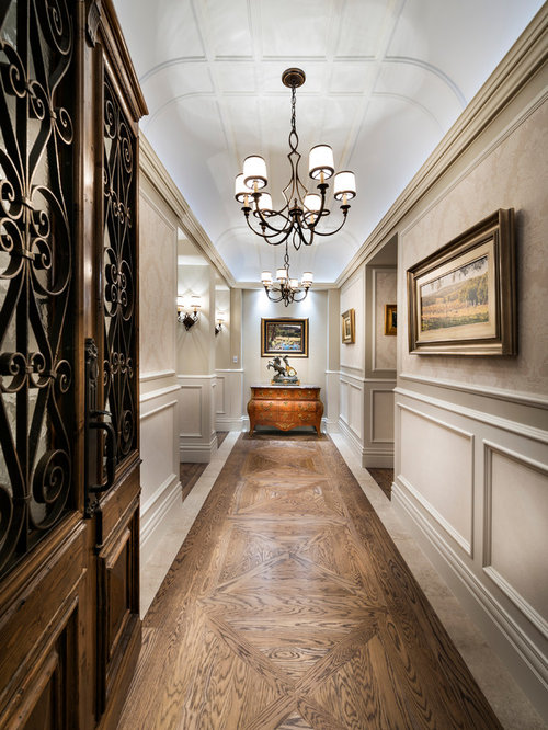 Luxurious Hallway Home Design Ideas, Pictures, Remodel And