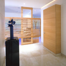 Contemporary Entry by vgzarquitectura y diseño sc