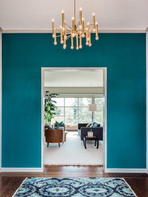 Contemporary dark wood floor entryway idea in San Francisco with blue walls. Modern Wall Colours   Houzz
