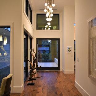 Inspiration för mellanstora moderna foajéer, med grå väggar, mellanmörkt trägolv, en pivotdörr, metalldörr och brunt golv