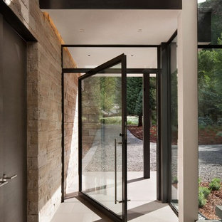 Inspiration for a modern brown floor entryway remodel in Other with a glass front door
