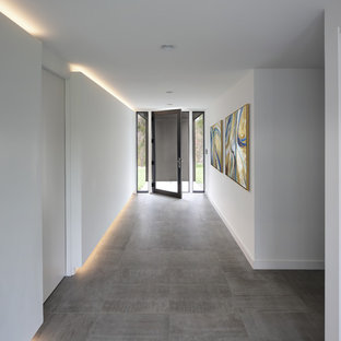 Entryway - modern gray floor entryway idea in Milwaukee with white walls and a glass front door