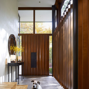 Inspiration for a modern front door remodel in Chicago with a dark wood front door