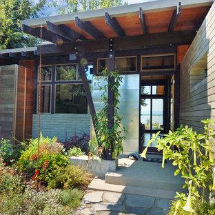 Immagine di una porta d'ingresso design di medie dimensioni con pareti con effetto metallico, pavimento in cemento, una porta singola e una porta in legno bruno