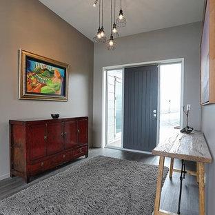 ダニーデンの広い片開きドアモダンスタイルのおしゃれな玄関ホール (グレーの壁、ラミネートの床、金属製ドア、グレーの床) の写真