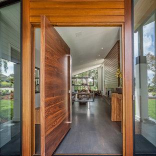 Imagen de entrada contemporánea con paredes blancas, suelo de madera oscura, puerta pivotante y puerta de madera oscura