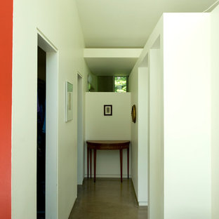 Inspiration for a small modern concrete floor entryway remodel in Detroit with red walls and a glass front door