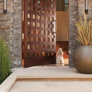 Exemple d'une entrée montagne avec une porte pivot et une porte en bois foncé.