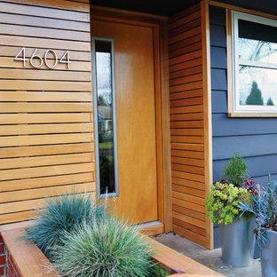 Modelo de puerta principal retro con puerta simple