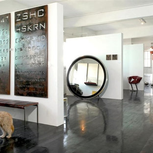Example of an urban dark wood floor and black floor entryway design in Other with white walls