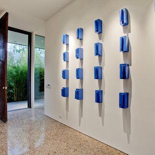 ダラスのモダンスタイルのおしゃれな玄関 (テラゾーの床) の写真