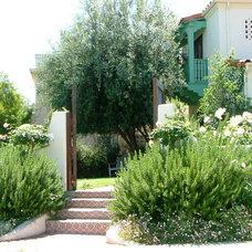 Mediterranean Entry by katie moss landscape design
