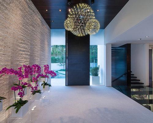 hall d 39 entr e contemporain avec une porte noire photos et id es d co de halls d 39 entr e de. Black Bedroom Furniture Sets. Home Design Ideas