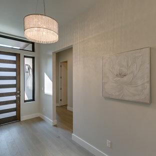 Diseño de puerta principal minimalista, de tamaño medio, con paredes grises, suelo vinílico, puerta simple, puerta de madera oscura y suelo gris