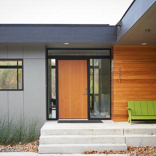 Moderne Haustür mit Einzeltür und hellbrauner Holztür in Minneapolis