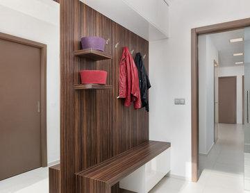 Macassar veneer and brown doors in modern interior